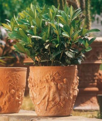 Vaso 4 stagioni - Terracotta-Vase -  4 Jahreszeiten