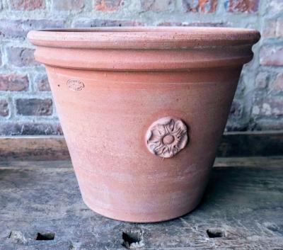 Caspo rosa torino - Kleiner Terracotta-Topf mit Rosette
