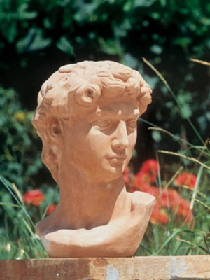 Testa David - Terracotta Kopf
